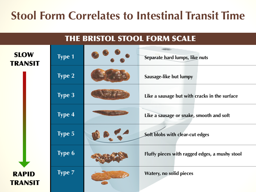 What Can Your Stool Tell You About Your Health Juli Keene The Los Angeles Nutritionist
